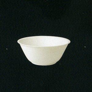 basp16-20-25d1-salatnik