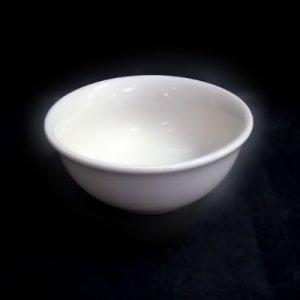 nnbw09-10-12-20-salatnik